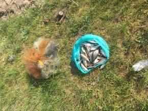 Порушник завдав майже 10 тис. грн збитків, - Житомирський рибоохоронний патруль