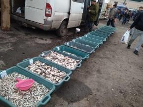 У жовтні поточного року вилучено 110 заборонених знарядь лову, - рибоохоронний патруль Житомирщини